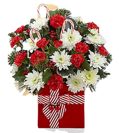 Candy Cane Holiday Christmas Bouquet