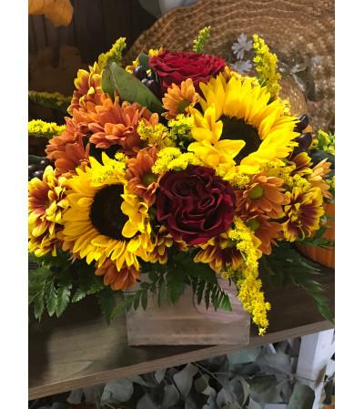 Sunflower wood box Fall