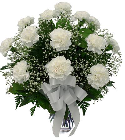 12 White Carnations in vase