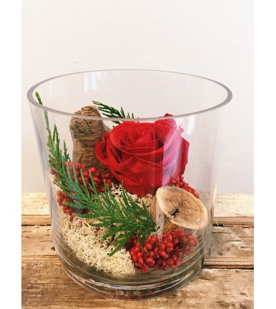 Preserved Rose (Red)