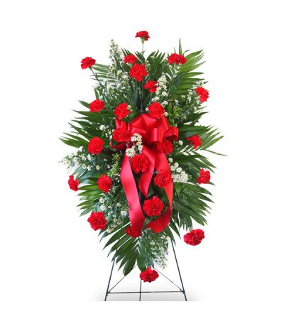Standing Spray-Red Carnations
