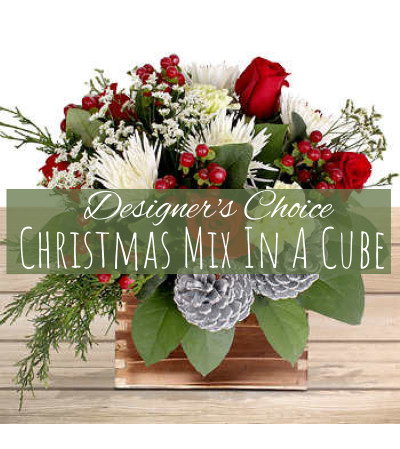Christmas Mix In A Cube Florist Design