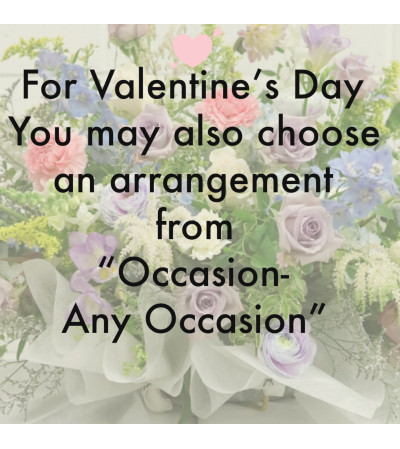 Occasion-Any Occasion