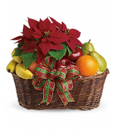 Fruits and Poinsetta