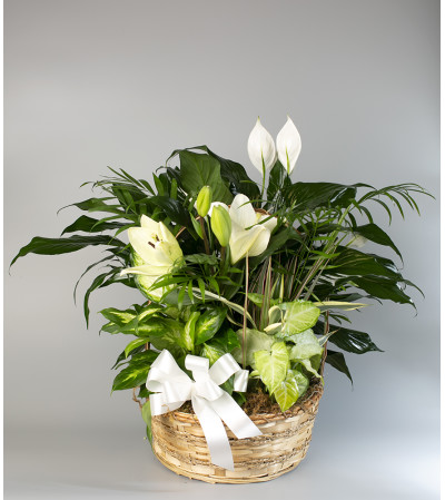 Euro Basket with Lilies