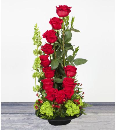 Spiral Up Roses