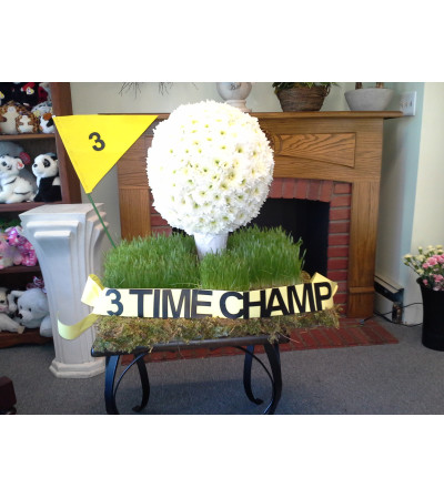 Golf Ball Novelty Arrangement