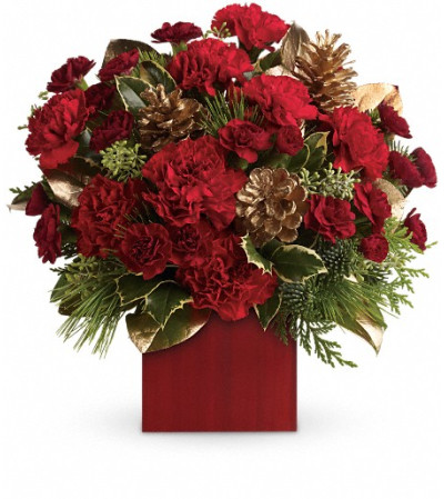 Laughter and Cheer by Teleflora
