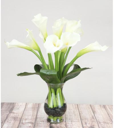 Exquisite Calla Lily