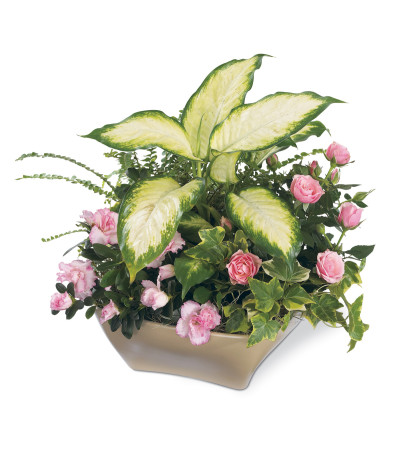 The FTD® Garden of Grace™ Planter