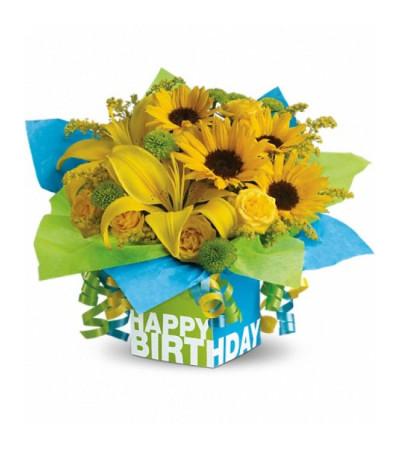 Sunny Birthday Present