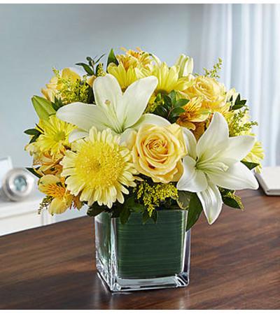 Healing Tears™ Yellow and White