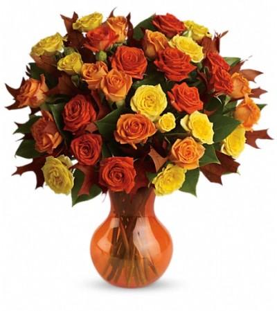Teleflora's Fabulous Fall Roses