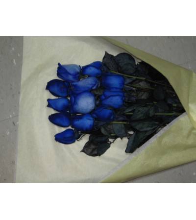 Enigmatic Blue Roses