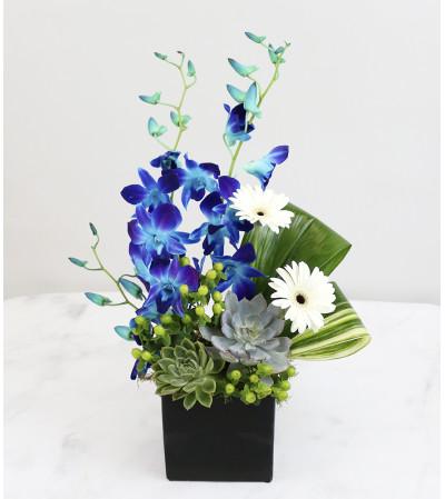 Contemporary Chic Bouquet