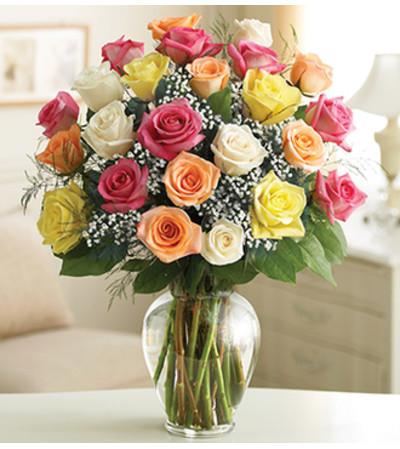 Two Dozen Premium Long Stem Assorted Roses