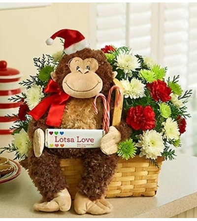 Lotsa Love® for Christmas