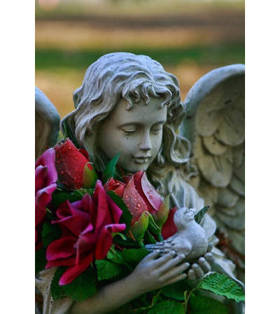 ANGEL STATUE ARRANGEMENT