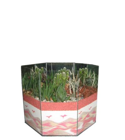 Cactus Garden Art