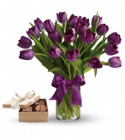 Purple TulipsGift Set
