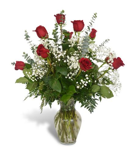 One Dozen Premium Roses in Red 2020
