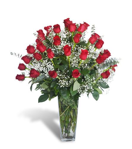 Four Dozen Premium Roses 2020