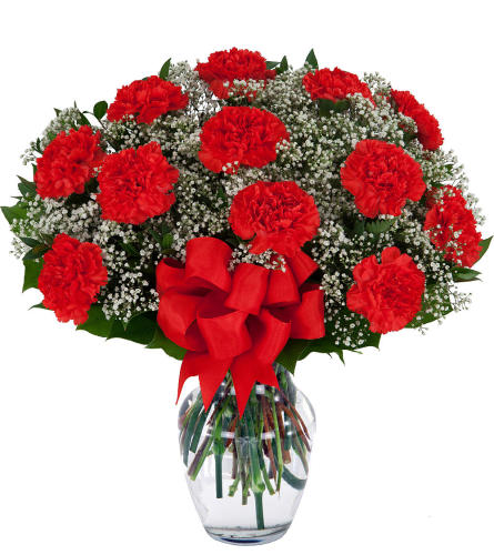 SPECIAL! 40% OFF 12 Red Carnations Arranged