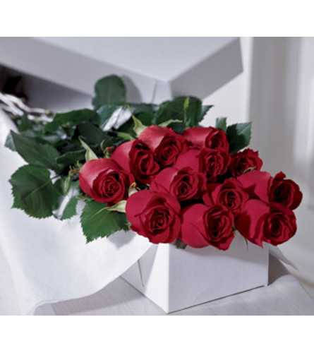 Valentine's Boxed Dozen Roses