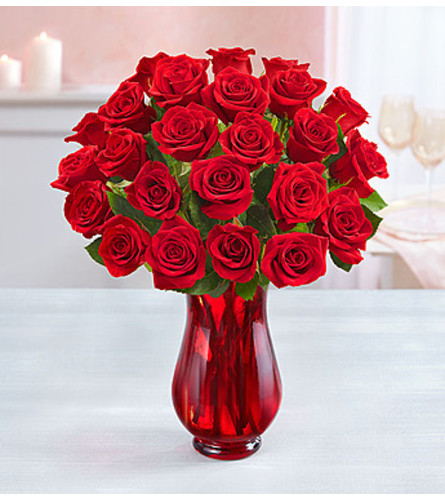 Romantic Red Roses Two Dozen
