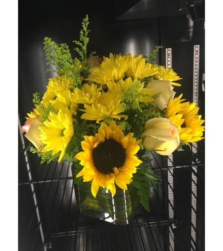 Sunflower yellow medley