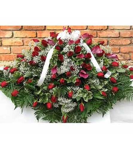 Red Roses  GF-CC1