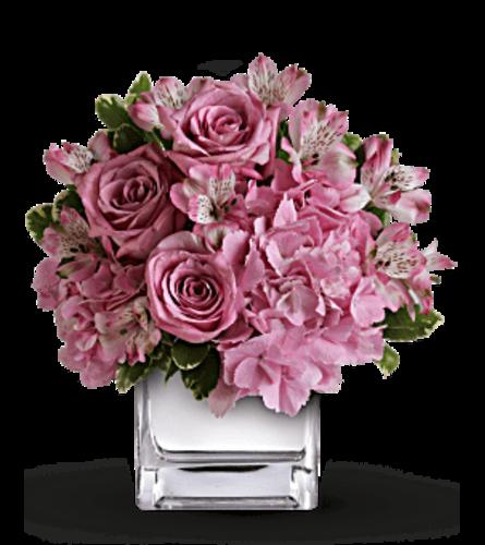 Sweetness In Pink