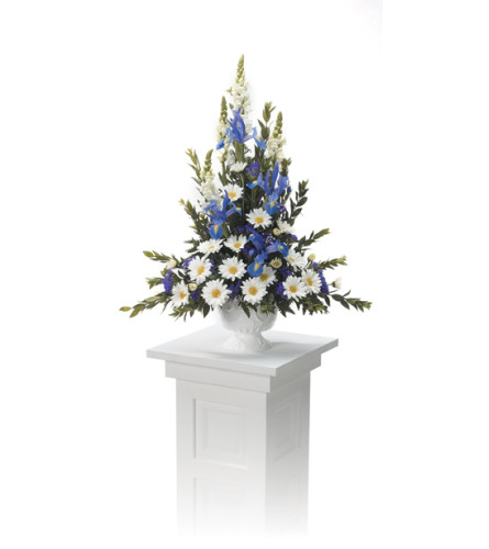 Pedestal Arrangement  CTT8-110