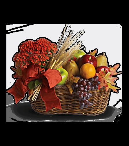 Fresh Picked Basket