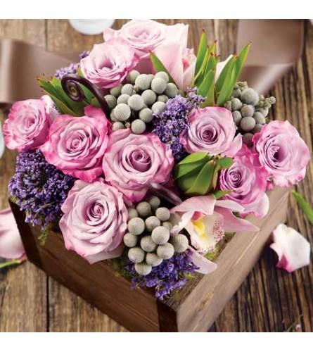 Lubna Purple