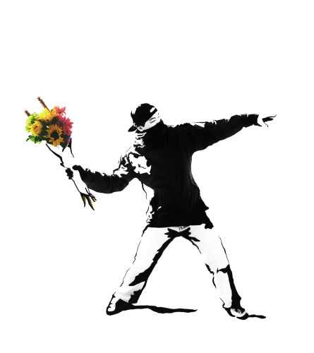 "FLOWER BOMBER - THE ""BANKSY"" WRAP OF FLOWERS"