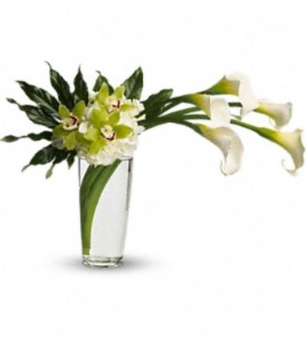 Moondance - by Jennifer's Flowers & Gifts