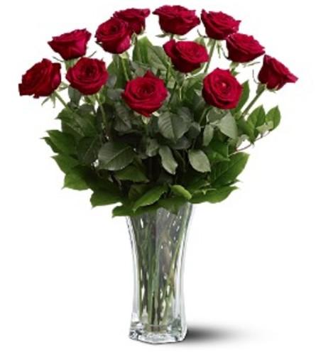 A Dozen Premium Red Roses