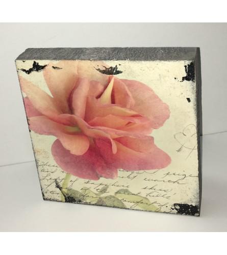 Salmon Rose Block Art I
