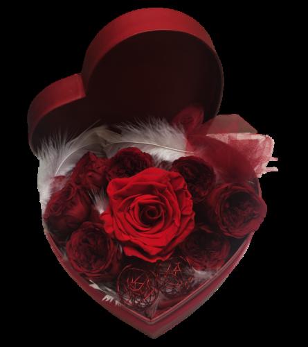 Preserved Rose box - 3 sizes