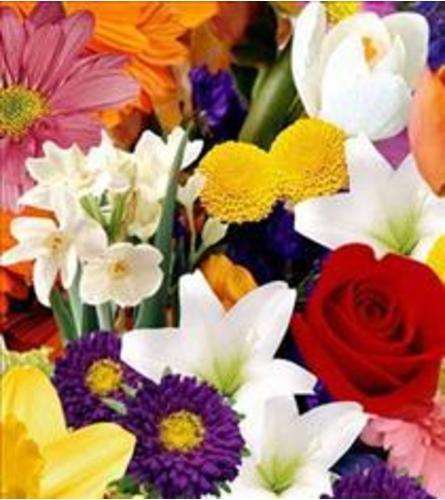 Mixed cut bouquet- no vase