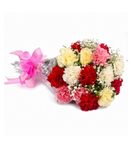 Fresh Cut Carnations