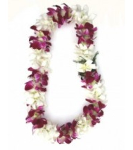double white and bombay orchid lei