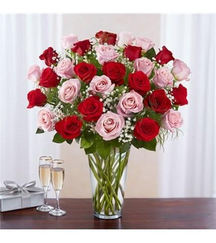 Long Stem Pink & Red Rose Bqt