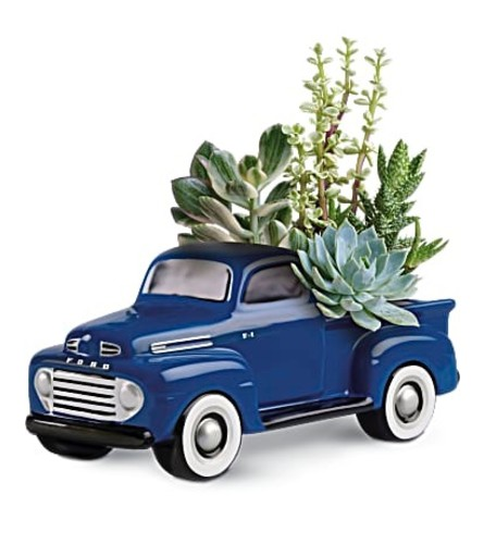 48 Ford succulent