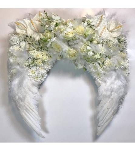 Beautiful Angel Wings