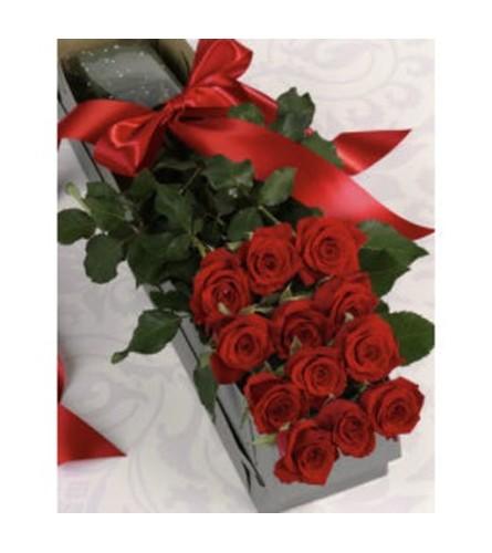 One Dozen Premium Red Roses Boxed