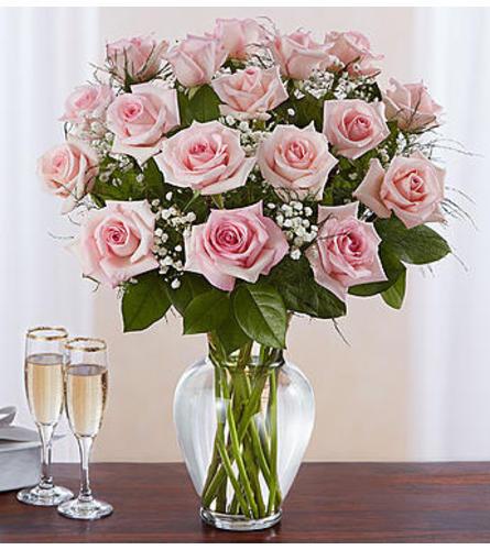 Pink Roses Eighteen