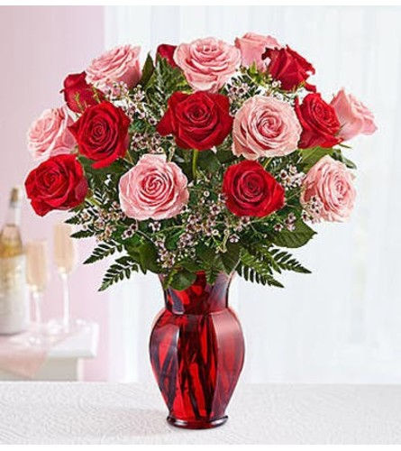 Eighteen Pink and Red Roses in Red Vase
