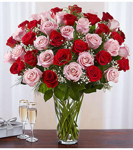 Pink and Red Roses Four Dozen